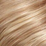 Medium Gold Blonde and Pale Natural Blonde Blend