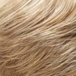 Medium Natural Gold Blonde and Pale Natural Blonde