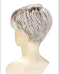 SILVERSUNRT8 Iced Blonde Dusted with Soft Sand & Golden Brown Roots